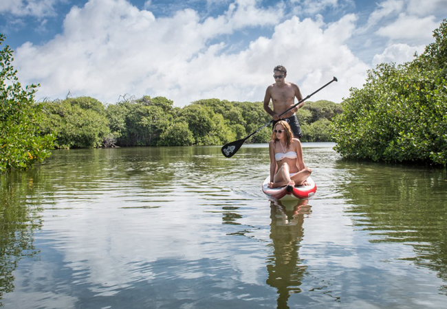 Go on a guided tour and visit the mangroves or discover it for yourself by canoe or SUP (Stand up paddle)